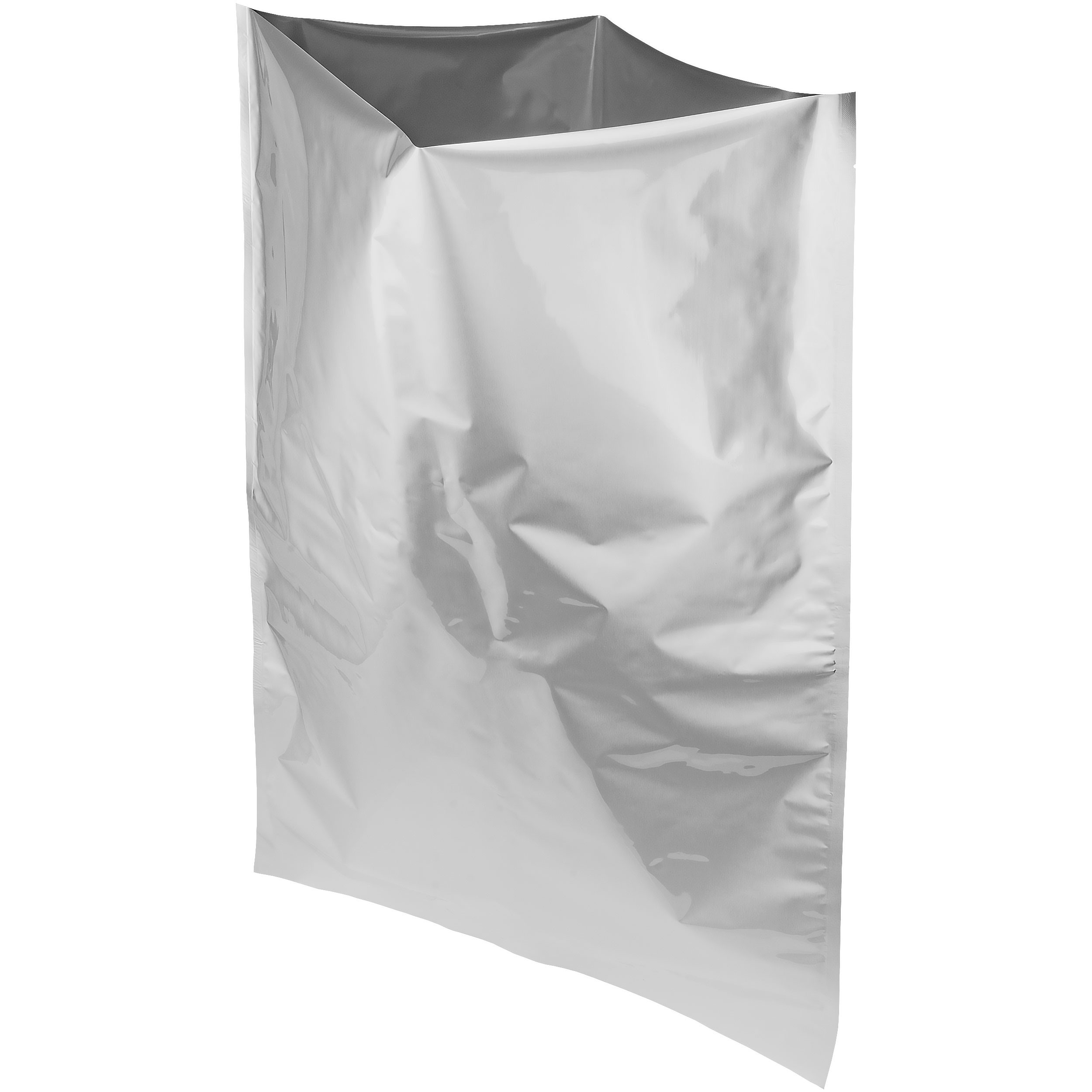 Mylar Bags & Oxygen Absorbers for Dried Food & Long Term Storage by Dry-Packs, 5-Gallon, Pack of 10